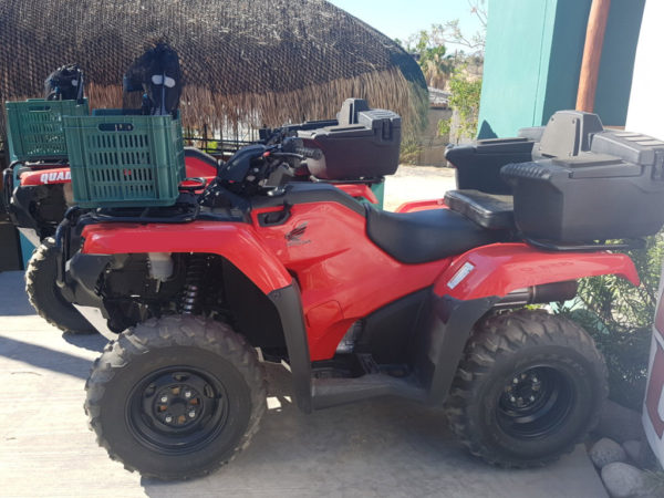 Quad Rental Los Barriles ATV Rentals